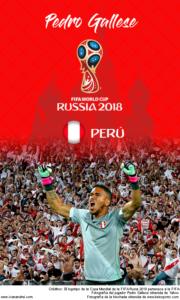Wallpaper de Pedro Gallese de Perú para la Copa Mundial de la FIFA - Rusia 2018 - Edición para teléfonos con resolución 480x800
