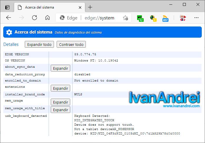 Opciones ocultas de Microsoft Edge - Página system