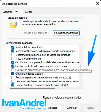 Mostrar extensión de archivos en Windows 11